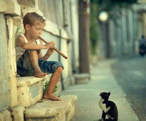 cat, boy, and music image
