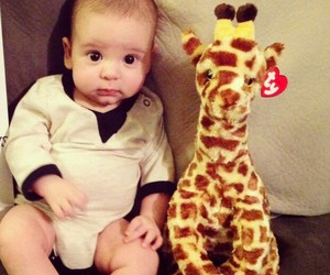 baby, giraffe, and sweet image