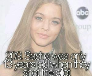 sasha image