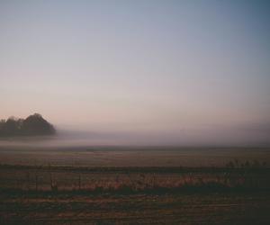 beautiful and melancholy image