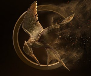 the hunger games and trilogy image