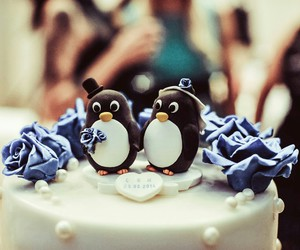 penguin, penguins, and wedding image