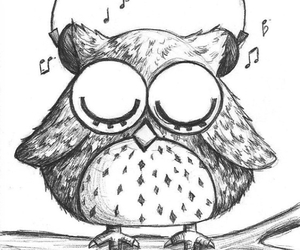 music and owl image