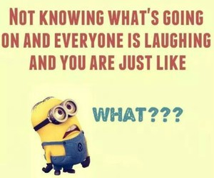 funny, minions, and what?? image
