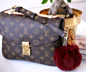 bag, LV, and isitvogue image