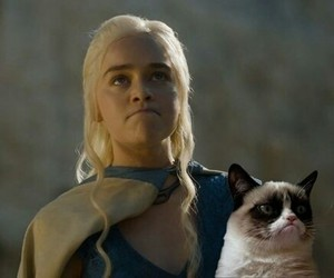 game of thrones, got, and grumpy cat image