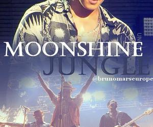 edit, photoshop, and moonshine jungle tour image