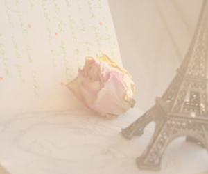 eiffel tower, pink, and rose image