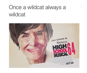 funny, zac efron, and wildcats image