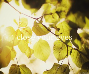 autumn, eyes, and Dream image