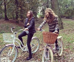 autumn, basket, and bike image