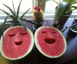 fruit, happy, and tumblr image