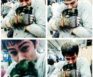dylan o'brien, teen wolf, and puppy image