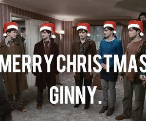 harry potter, funny, and christmas image
