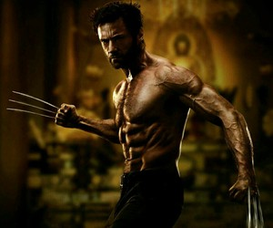 wolverine and Marvel image