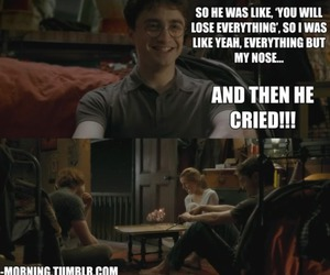 harry potter, lol, and nose image