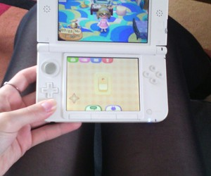 animal, animal crossing, and crossing image