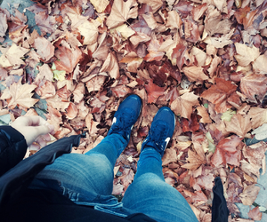 autumn, fashion, and nike image