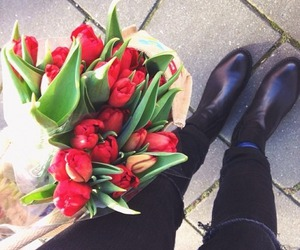 flowers, roses, and tulips image