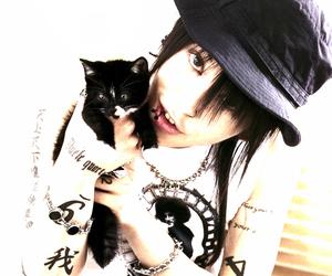 cat, miyavi, and photo image