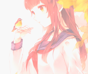 anime, anime girl, and bird image