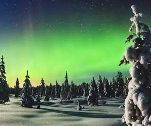 stars, sky, and winter image
