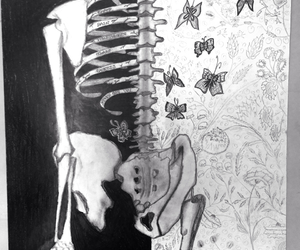 black&white, butterflies, and drawing image