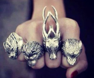 rings, game of thrones, and wolf image