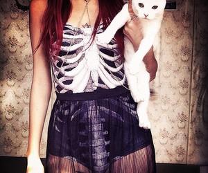 cat, skeleton, and beautiful image