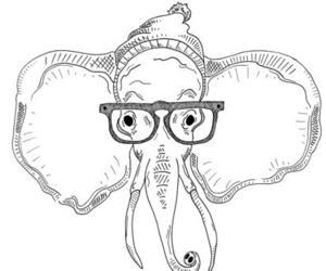 elephant, drawing, and glasses image