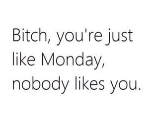 bitch, hate, and monday image