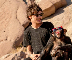 louis tomlinson, one direction, and steal my girl image
