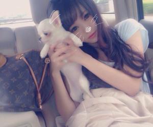 犬, 美少女, and 可愛い image