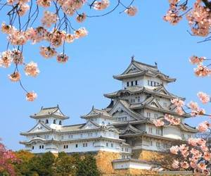 castle, japan, and spring image