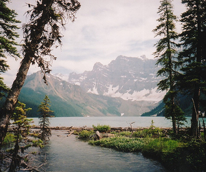 beauty, camp, and life image