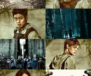 the maze runner, Minho, and newt image