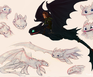 toothless, hiccup, and dragon image