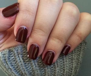 autumn, burgundy, and grey image