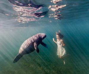 girl, sea, and bahamas image