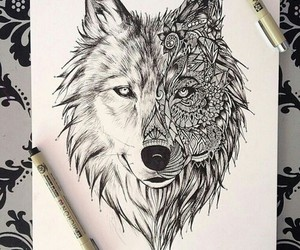 creative and wolf image