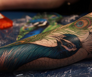 peacock, photography, and tattoo image