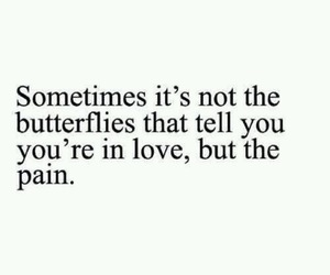 butterflies, in love, and pain image