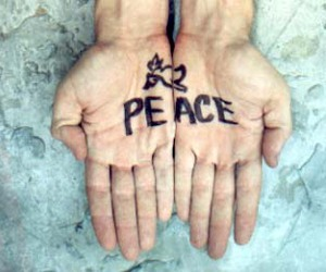 boy, peace, and hands image