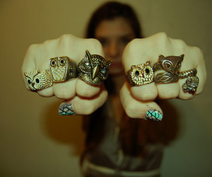 owl, rings, and ring image