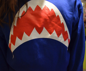 shark, blue, and sweater image