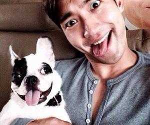 kpop, siwon, and dog image