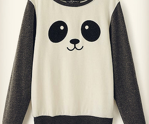 panda, cute, and sweater image