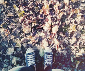 all star, cold, and fall image