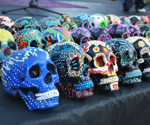 skull, art, and colorful image