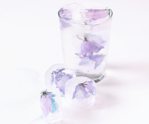 flowers and ice image